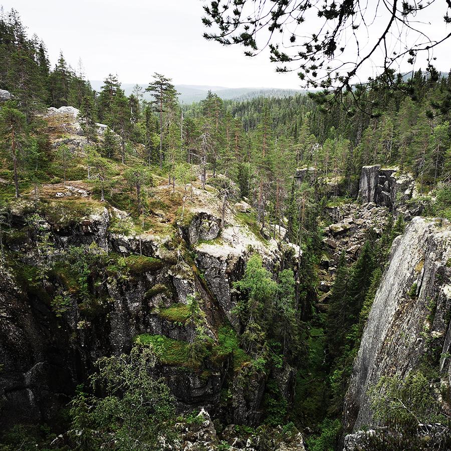 Stockholmsgata naturreservat