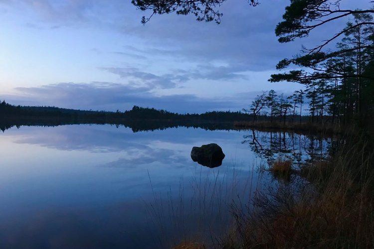 Årshultmyrens naturreservat - Stensjön