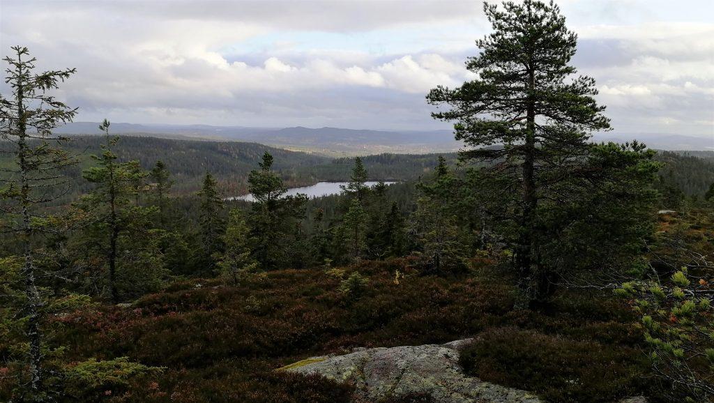 Utsikt från Stora Kullerberget