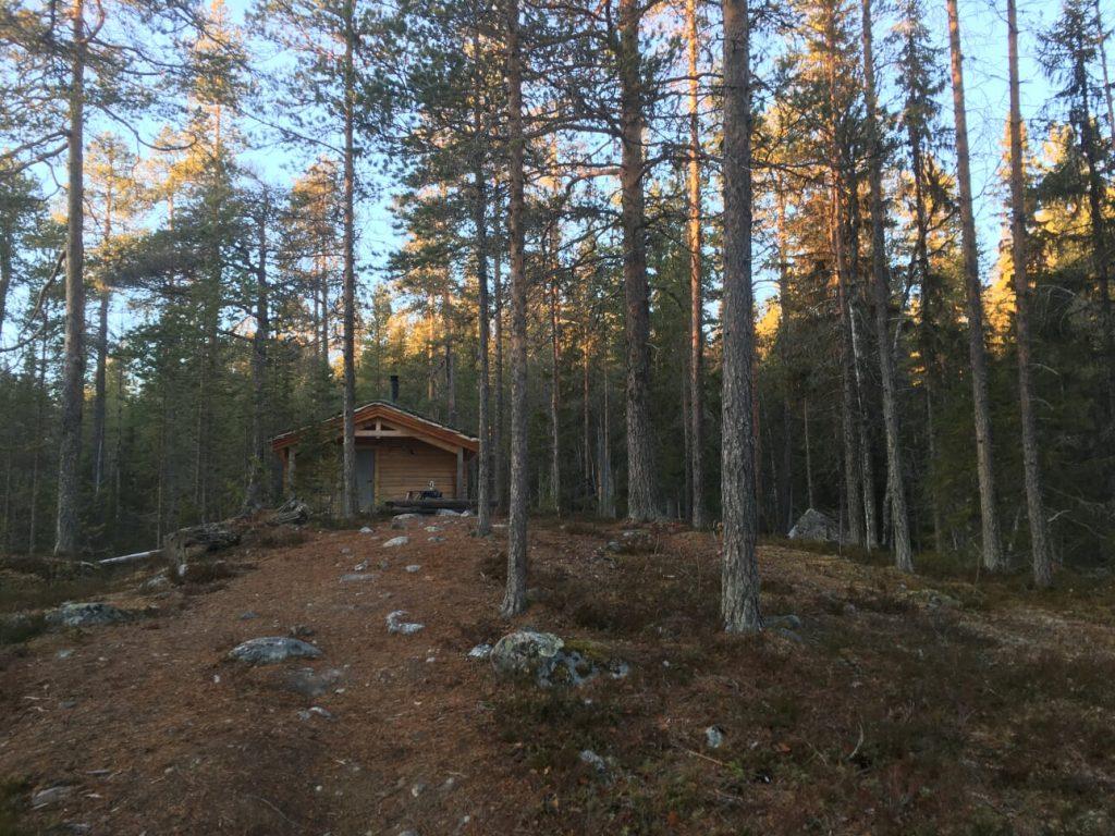 Angsjökojan i Björnlandets nationalpark