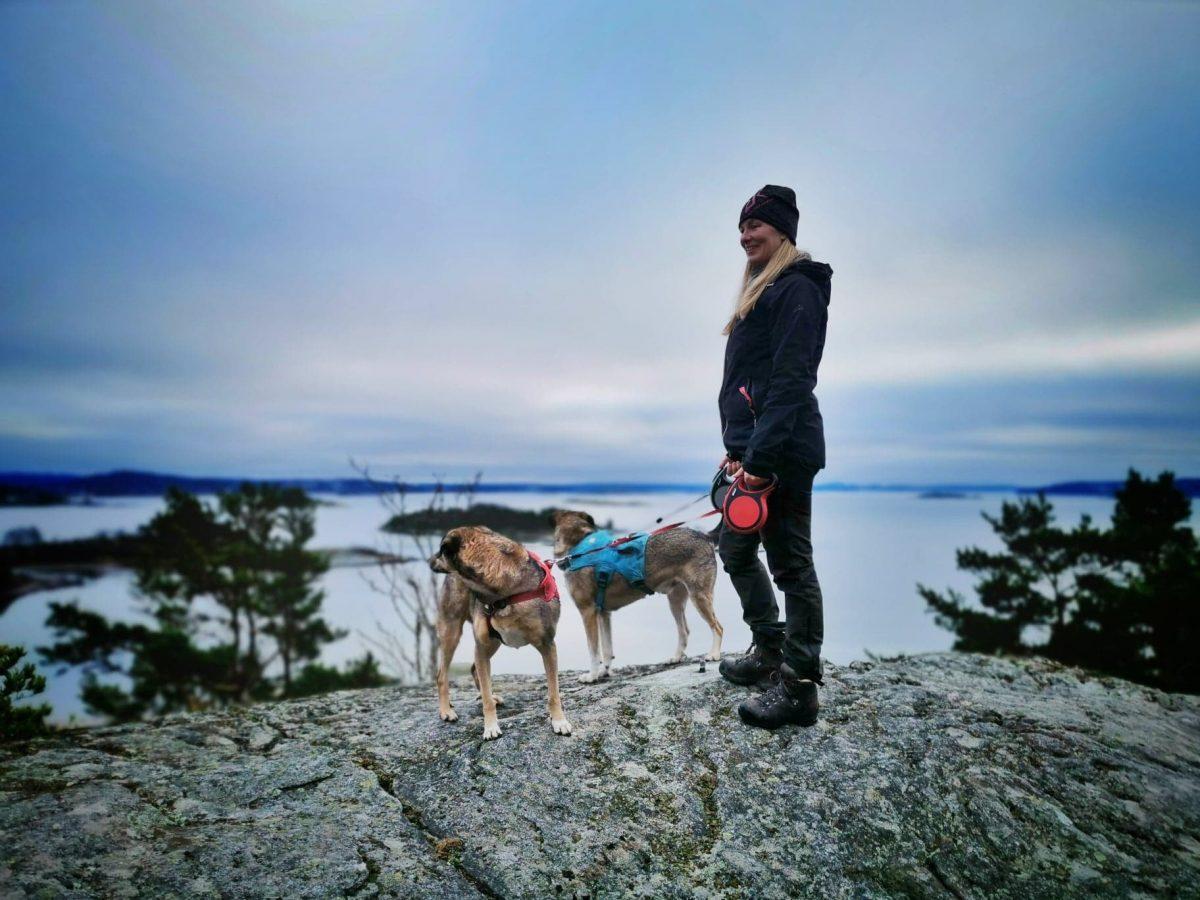 Jag och hundarna på Stenungsön