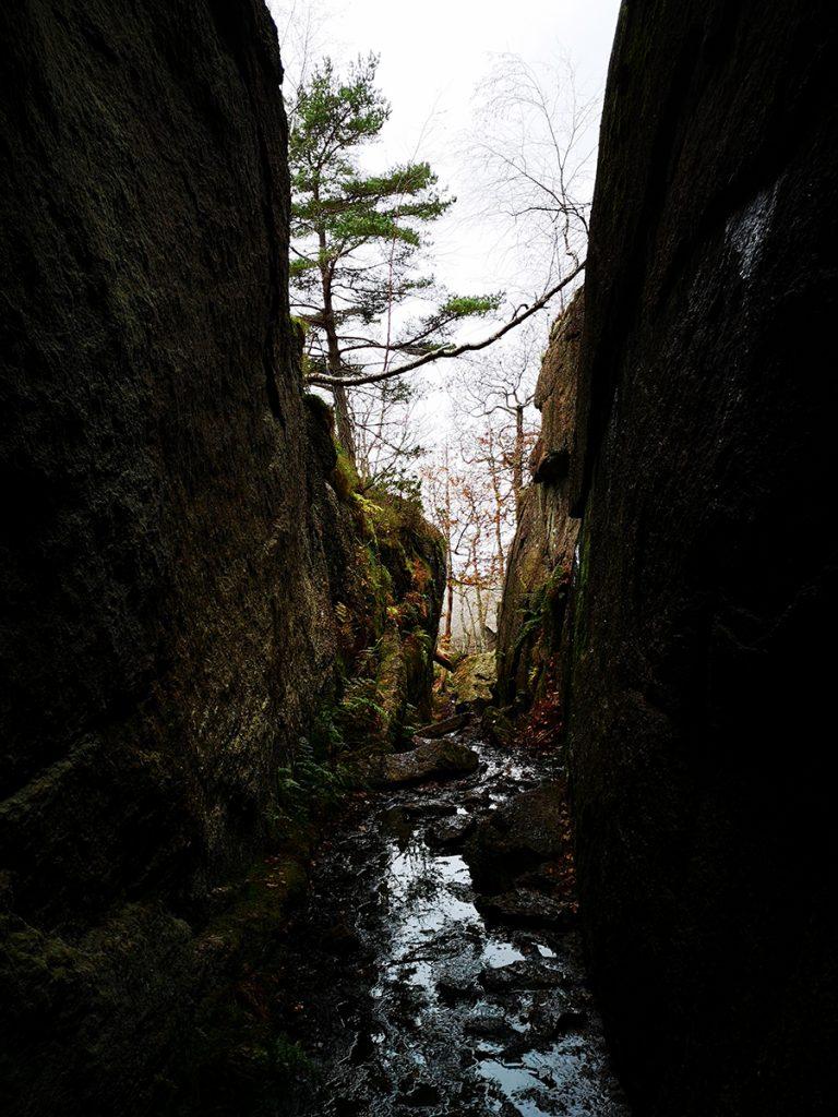 Blött i ravinen i Sundsby vandringsleder