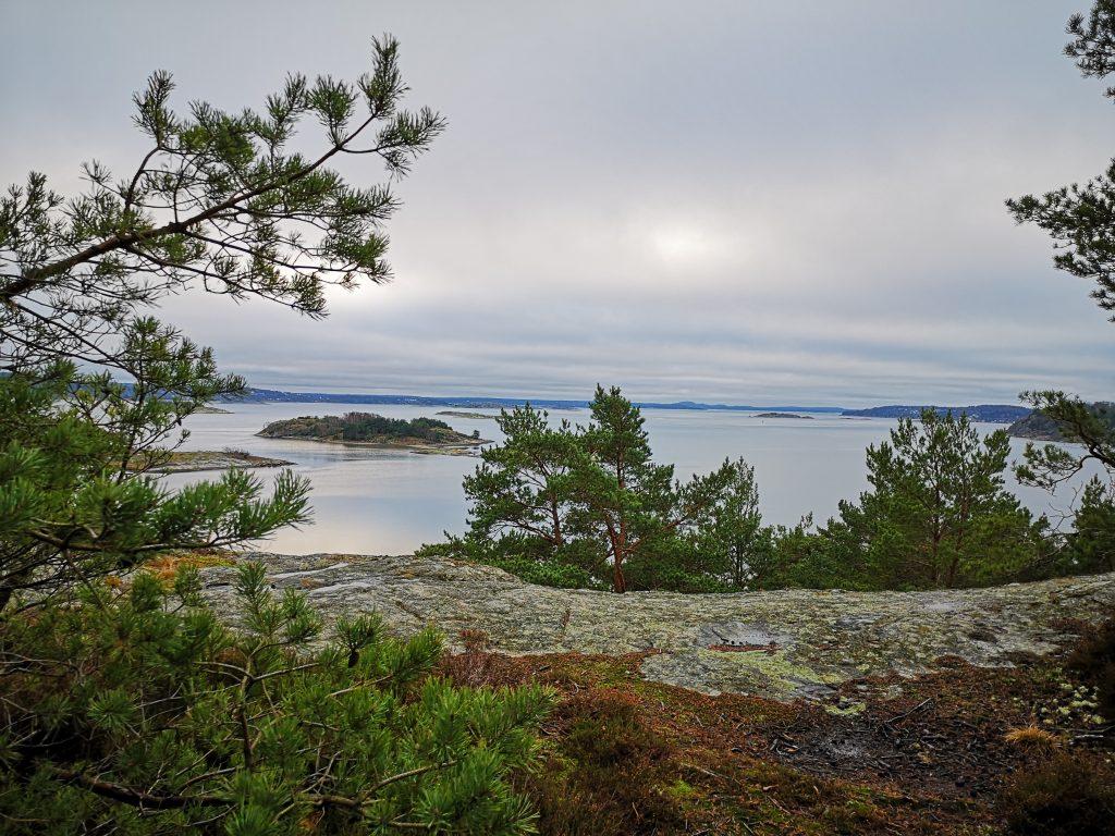 Södra Stenungsön - hit upp gick ingen stig men det var lätt att hitta
