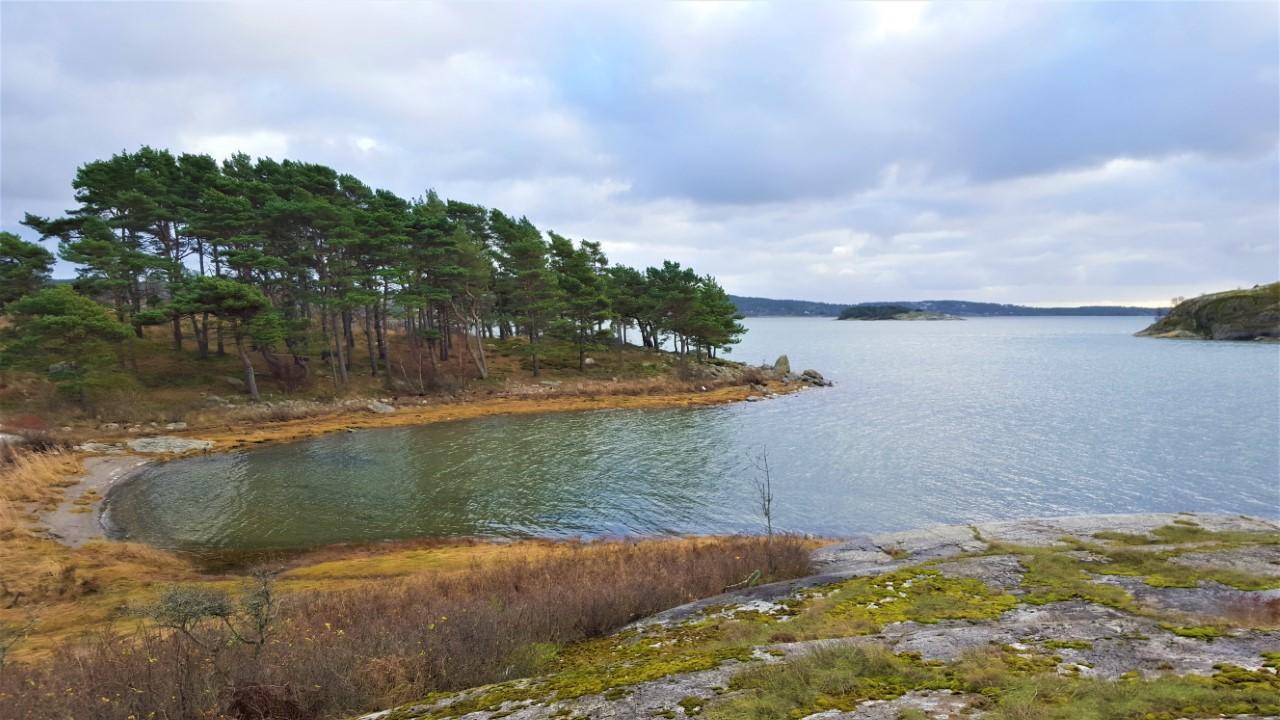 Bild lånad av Ronny Von Frank-Einsteins vandringstips.se (med tillstånd)