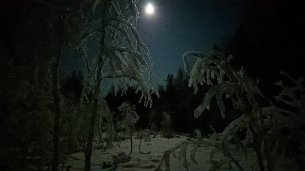Ute på snöskor i månsken