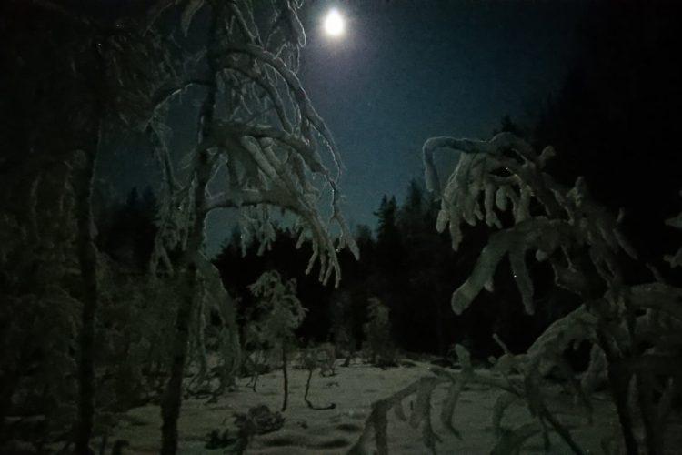 Snöskor i månsken