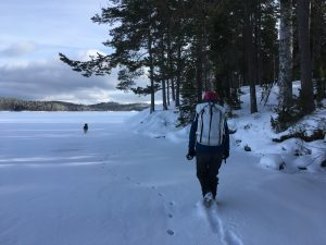 Lätt att gå på isen längs kanten