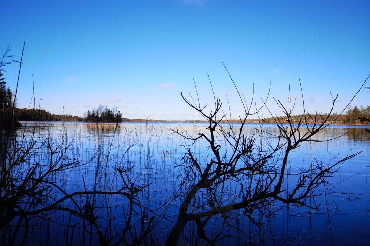 Spexhultasjön, Nässjö kommun, dit jag kom på en helt improviserad tur