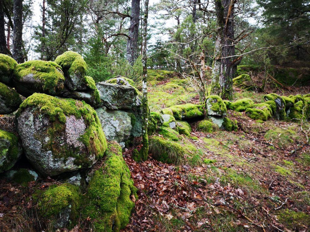 Kalvhagen - där det finns rester av en lada/fähus