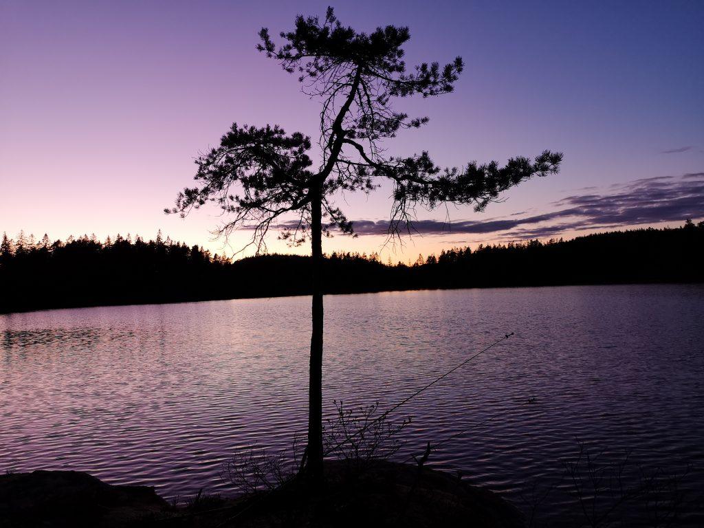 Vacker solnedgång utanför tältet