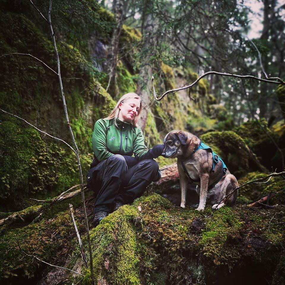 Jag och min hund Gemini