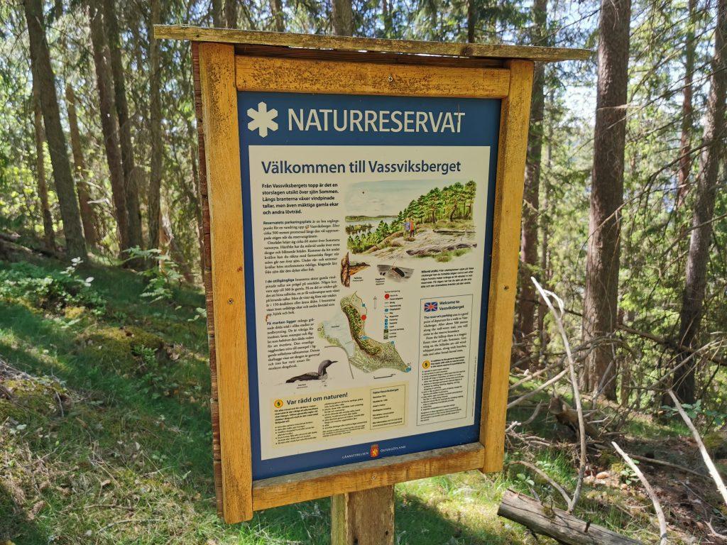 Vassviksberget - ett litet naturreservat i Norra Vi, Ydre kommun