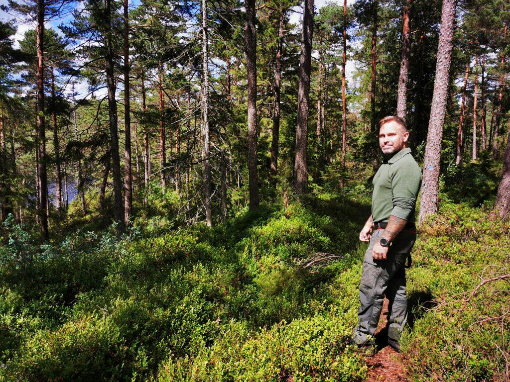 Området präglas av äldre barrskog