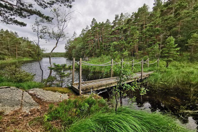 Bron som förbinder Mellersta och Övre Kvarnsjön, Kvarnsjöarna naturreservat, Risveden