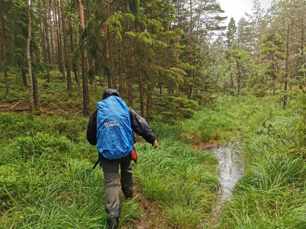 Vi fick gå flera små omvägar på grund av allt vatten som samlats på stigen