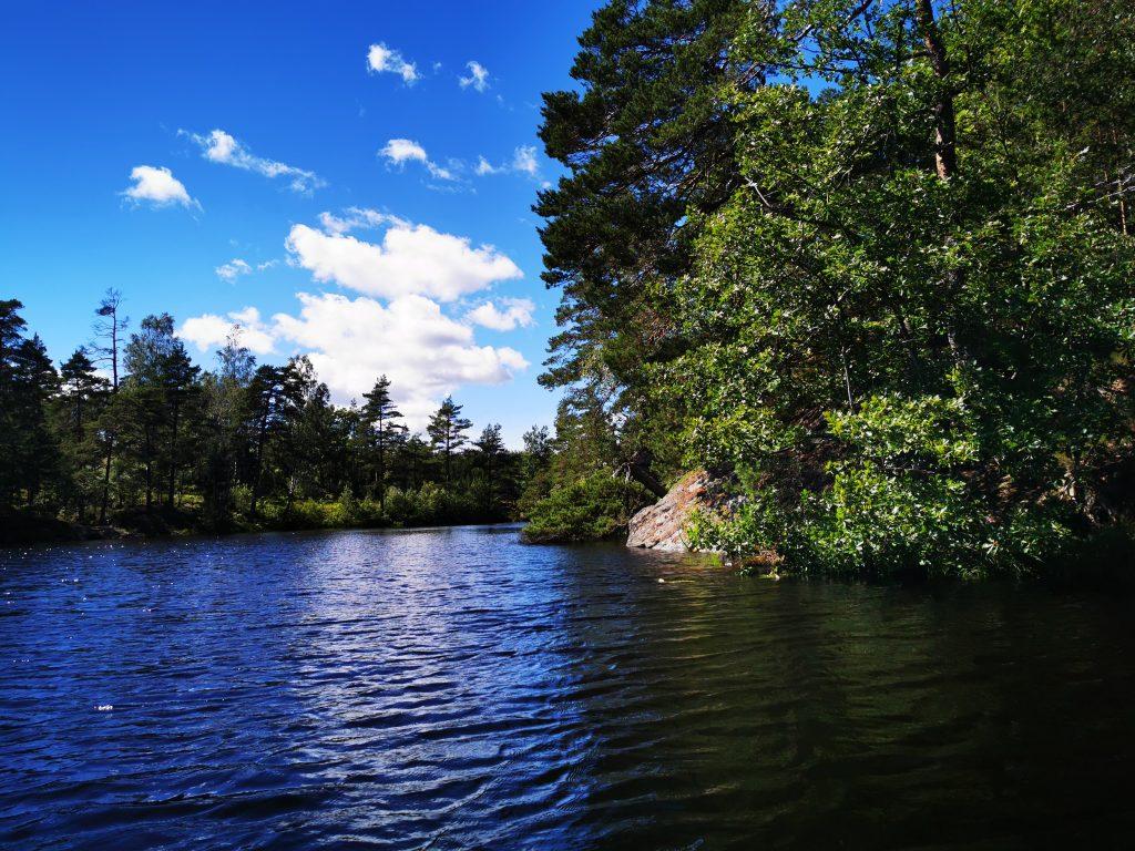 Sjön Stendammen ligger både i och utanför Svartedalen naturreservat