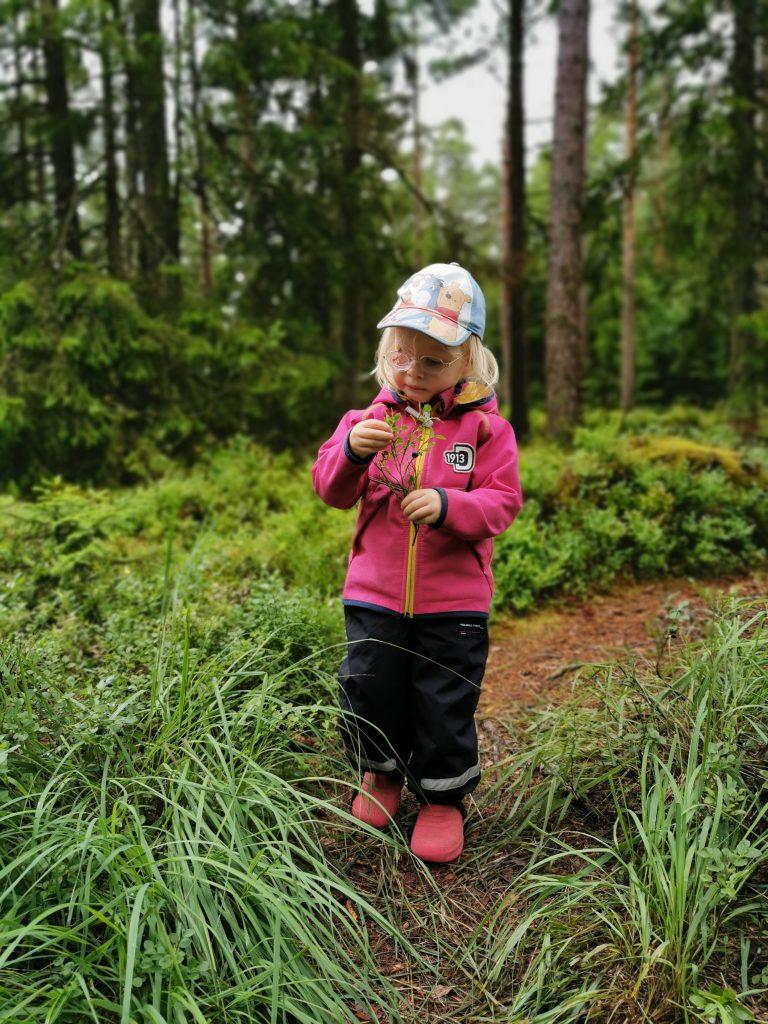 Blåbär fanns det gott om i Kroksjön naturreservat