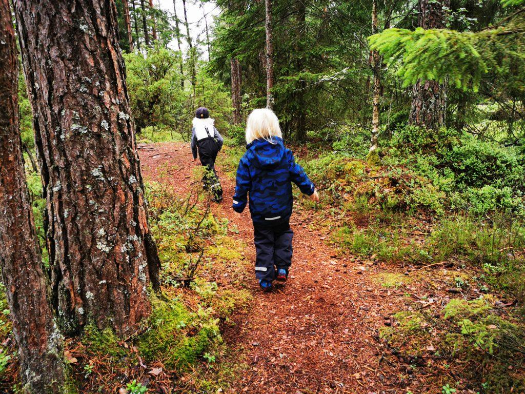 Lätt att gå längs stigen mot Kroksjön