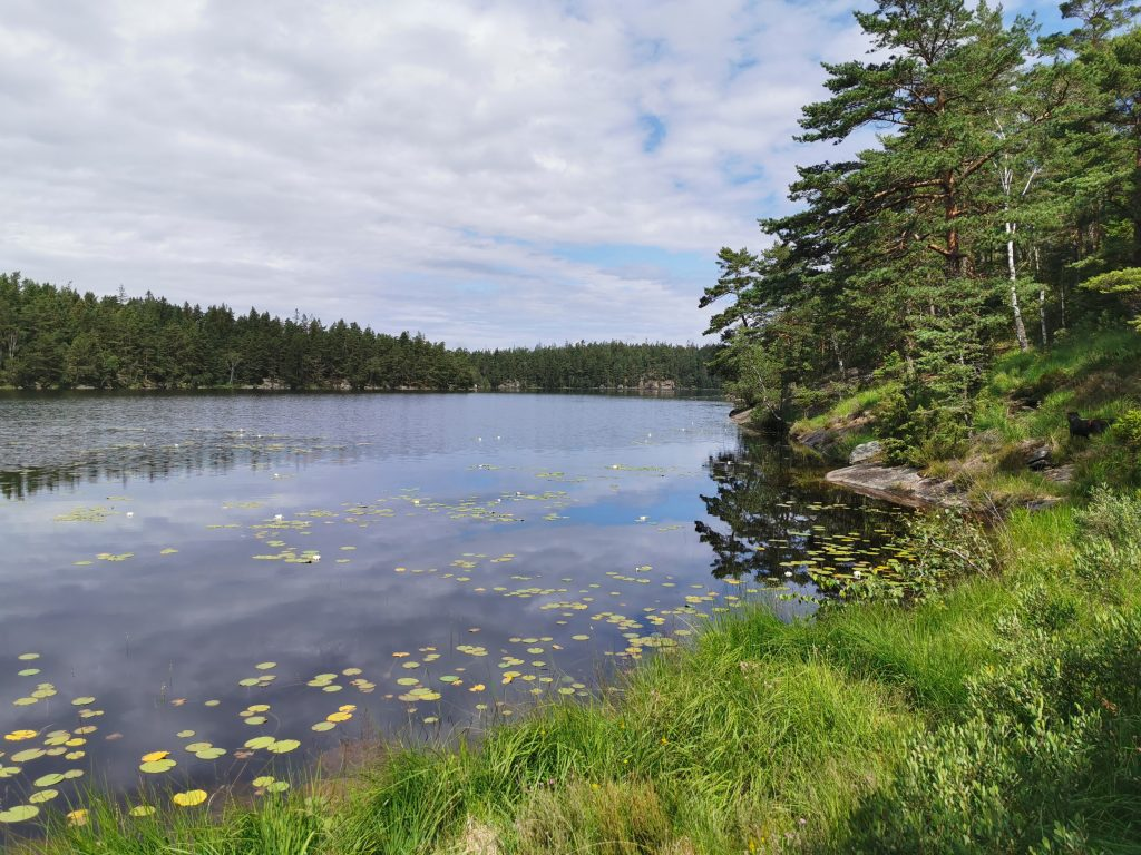 Vackert runt Stora Kroksjön