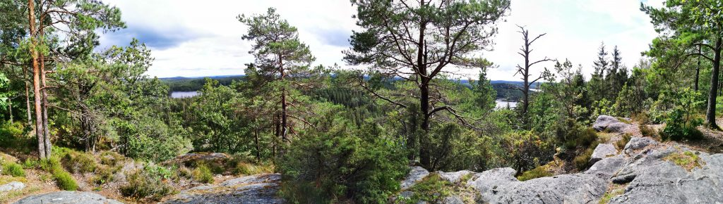 Utsikten från Klevsjöloft