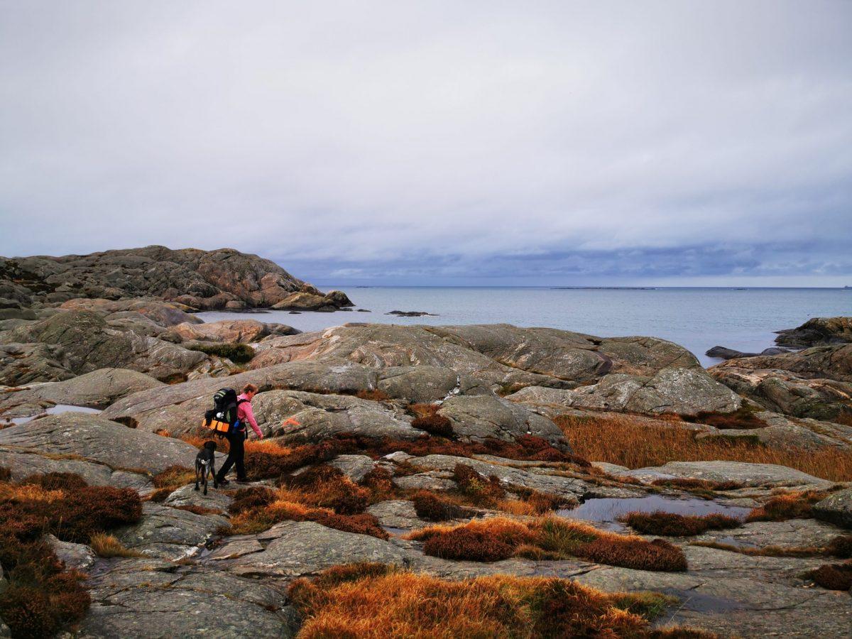 Upptäcktsfärd på Härmanö, Orust ⋆ Hemomkringvandring