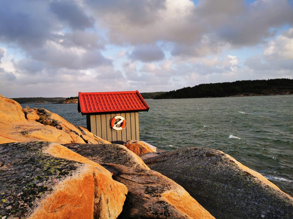 I naturreservatet Svanvik