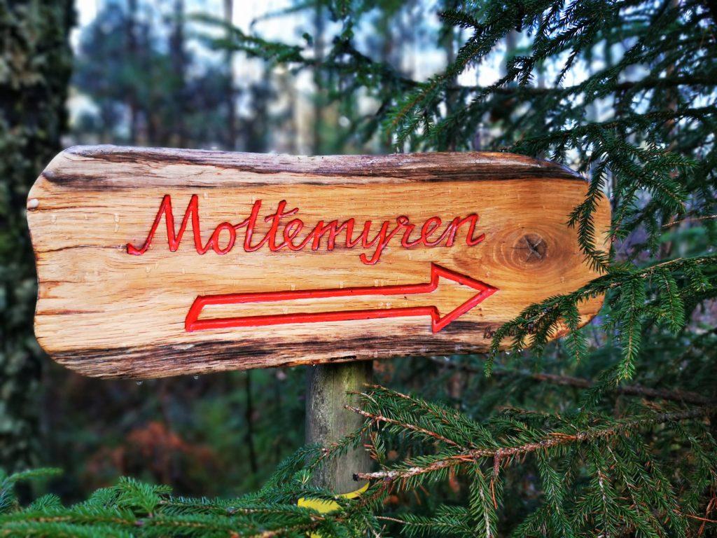 En skylt visade att den lilla sjön heter Motlemyren