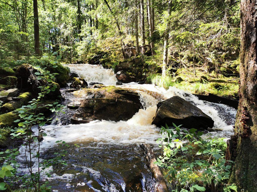 Vattenfallet vid Stendammen i sommarskrud