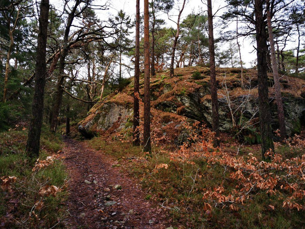 En typisk syn längs etapp 8 mellan Malö strömmar och Göksäter