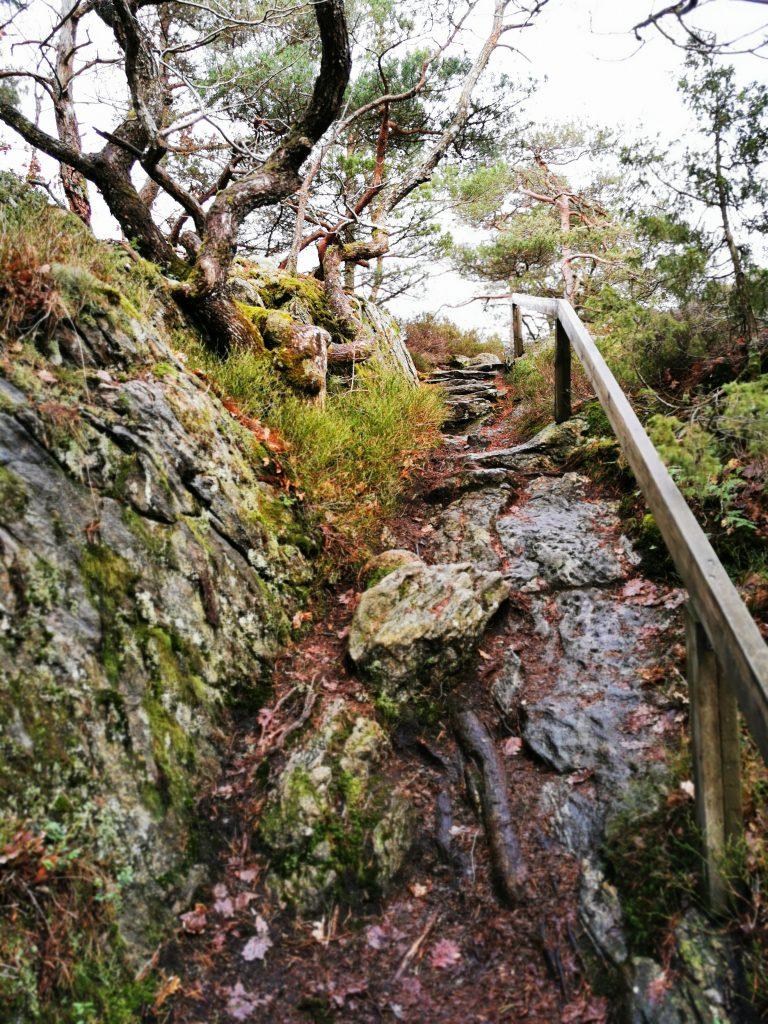 Trappan upp till Slottsbergets topp