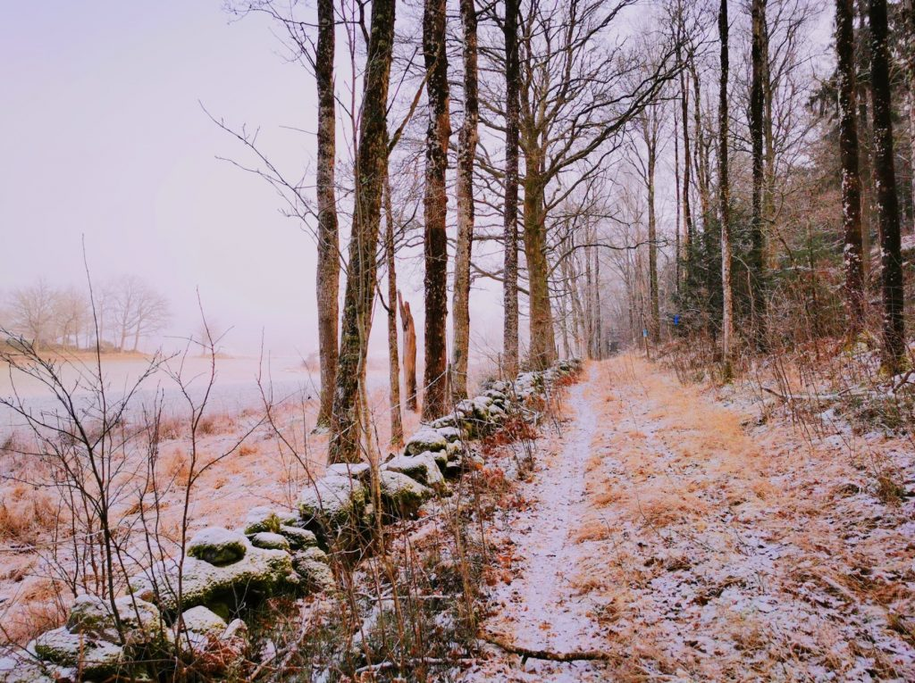 Det var ren njutning att gå här i tystnaden förbi gårdar och fält