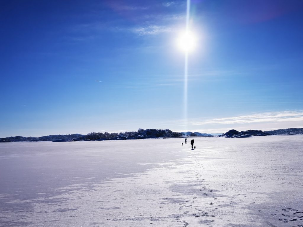 Sambon, dottern, vår hund och vår valp på väg på upptäcktsfärd på isen