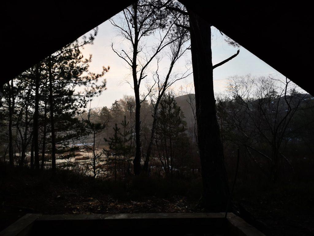 Utsikten när jag kravlade ut genom dörröppningen i morse