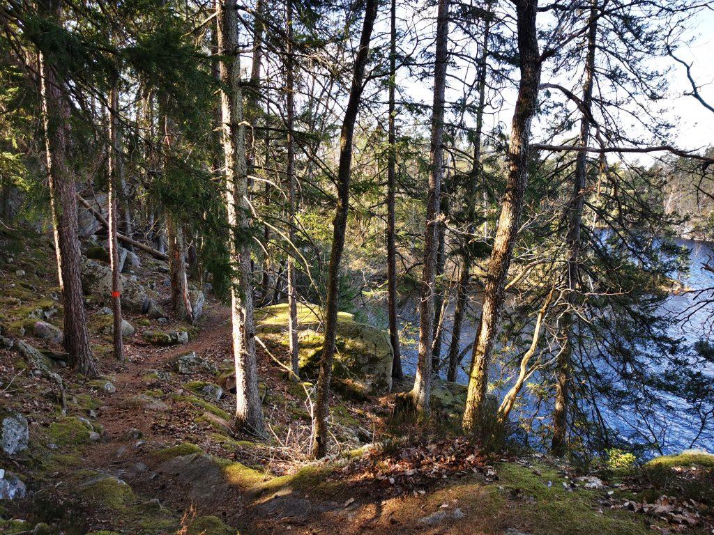 Här skymtar Stora Köperödssjön mellan träden