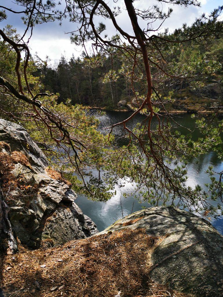 Hinnevatten i Ranebo naturskog