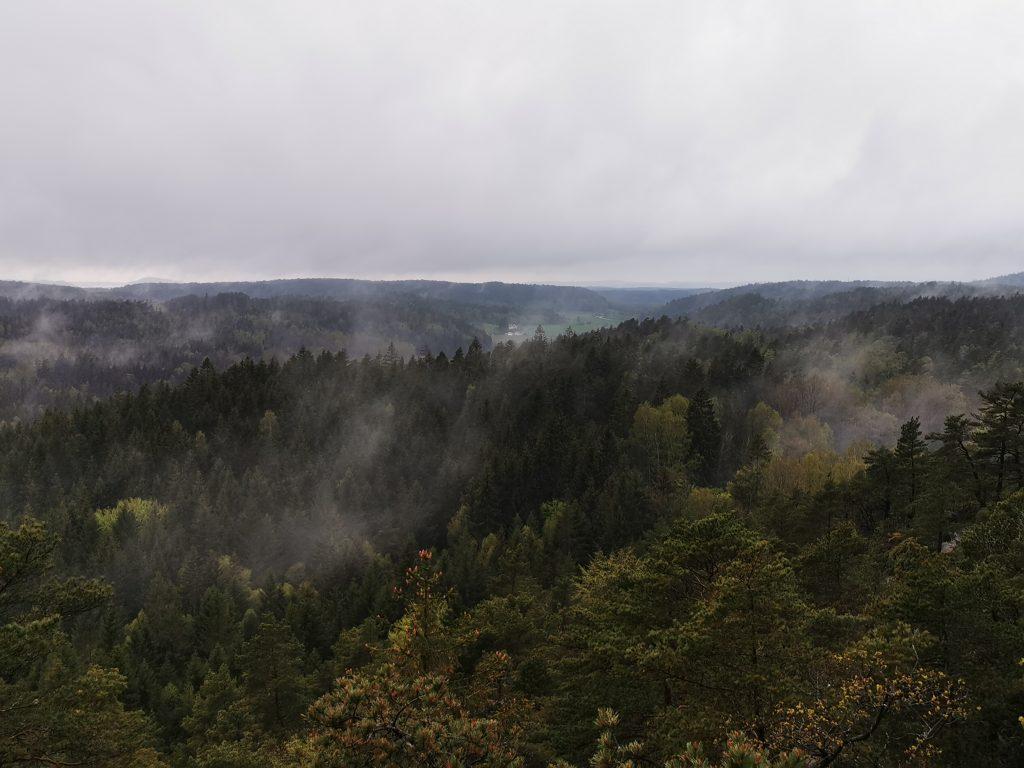 Dimma mellan regnskurarna