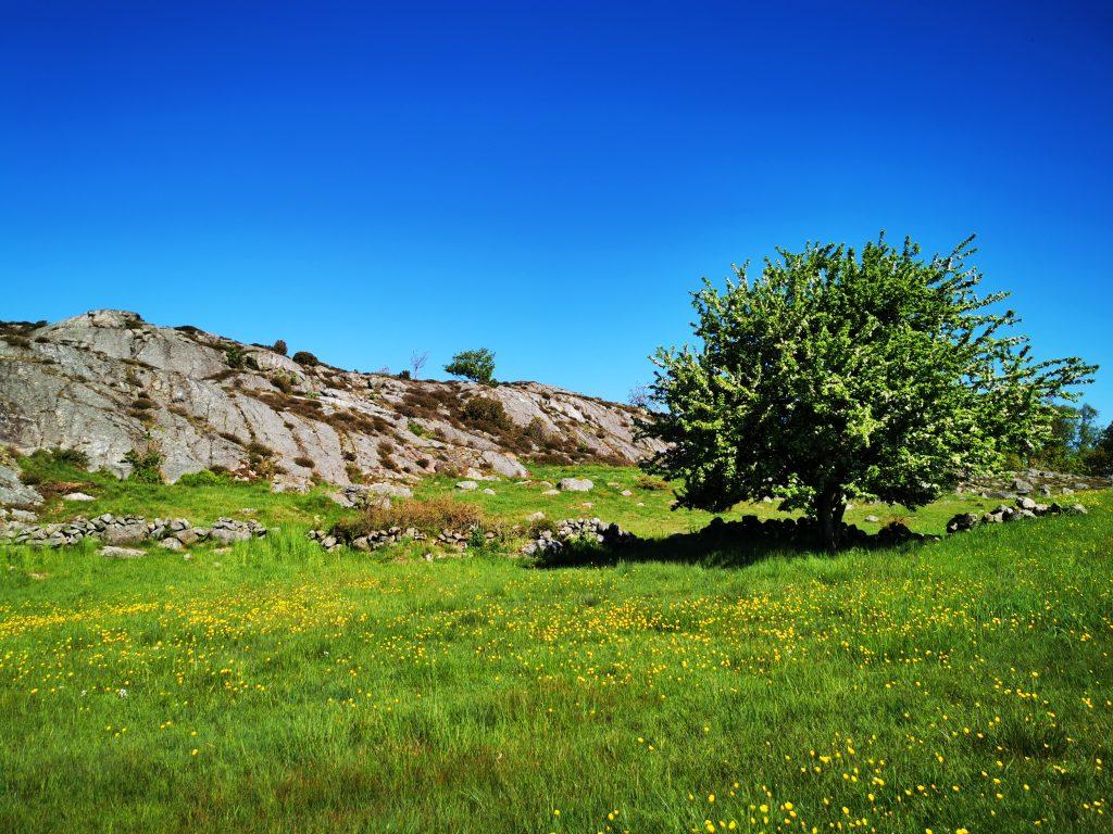 Ett fantastiskt landskap sträckte ut sig framför oss i Pilane