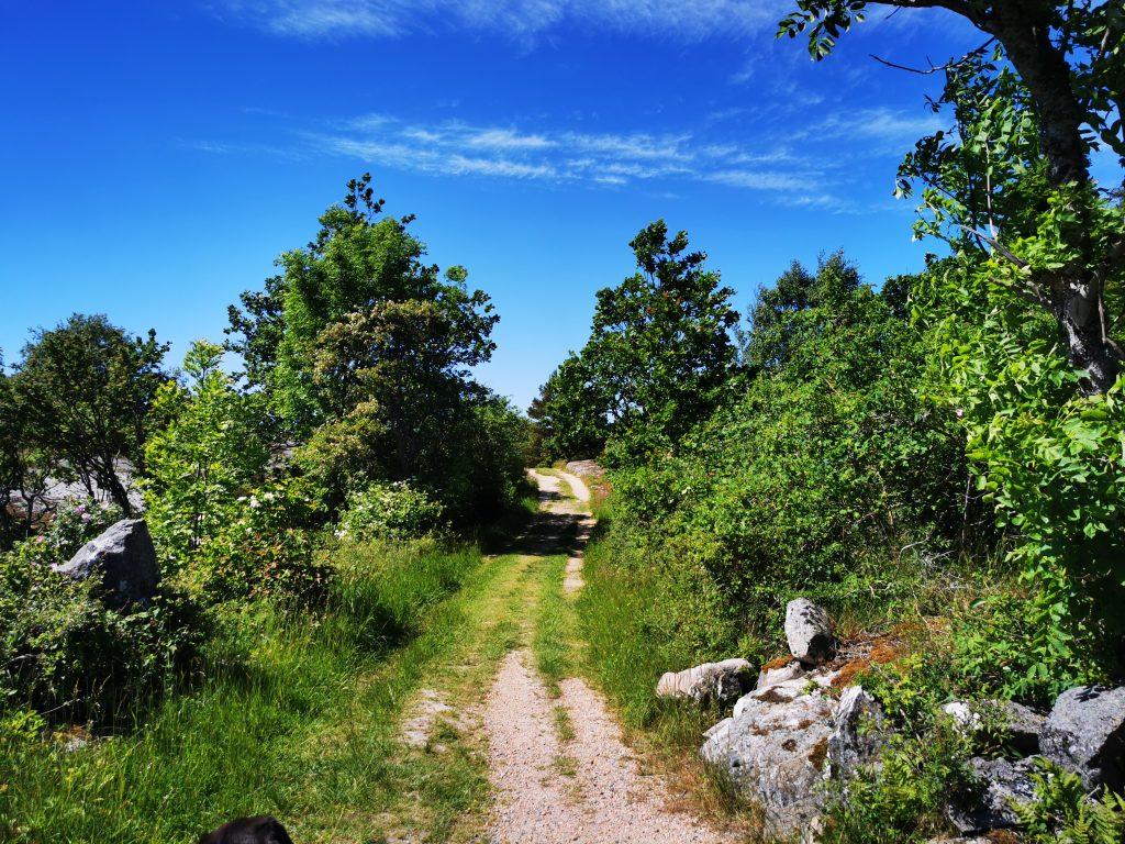 Porsnäsleden börjar på grusväg några hundra meter. Sedan över går den till den här idylliska miljön.