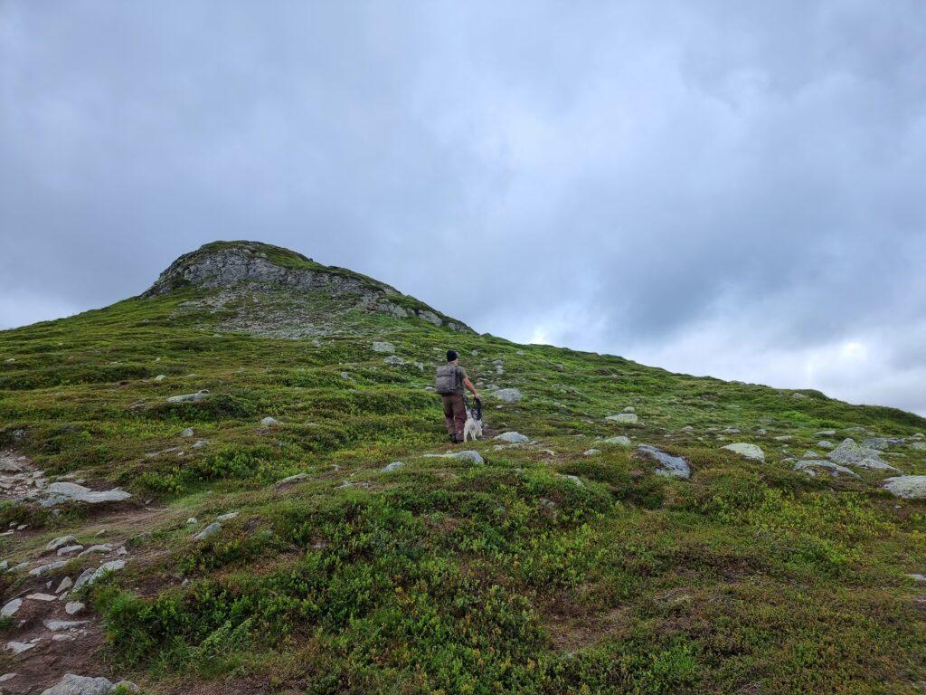 """På väg upp mot den första """"platån"""" av Svansjökläppen"""