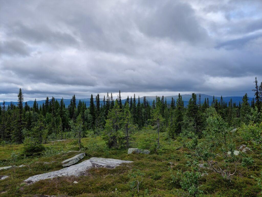 Utsikten som Lars och Balder hade stannat vid - på väg mot Evagraven