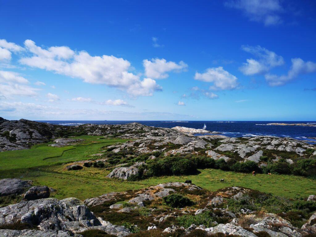 Utsikt mot Häröns västra kust