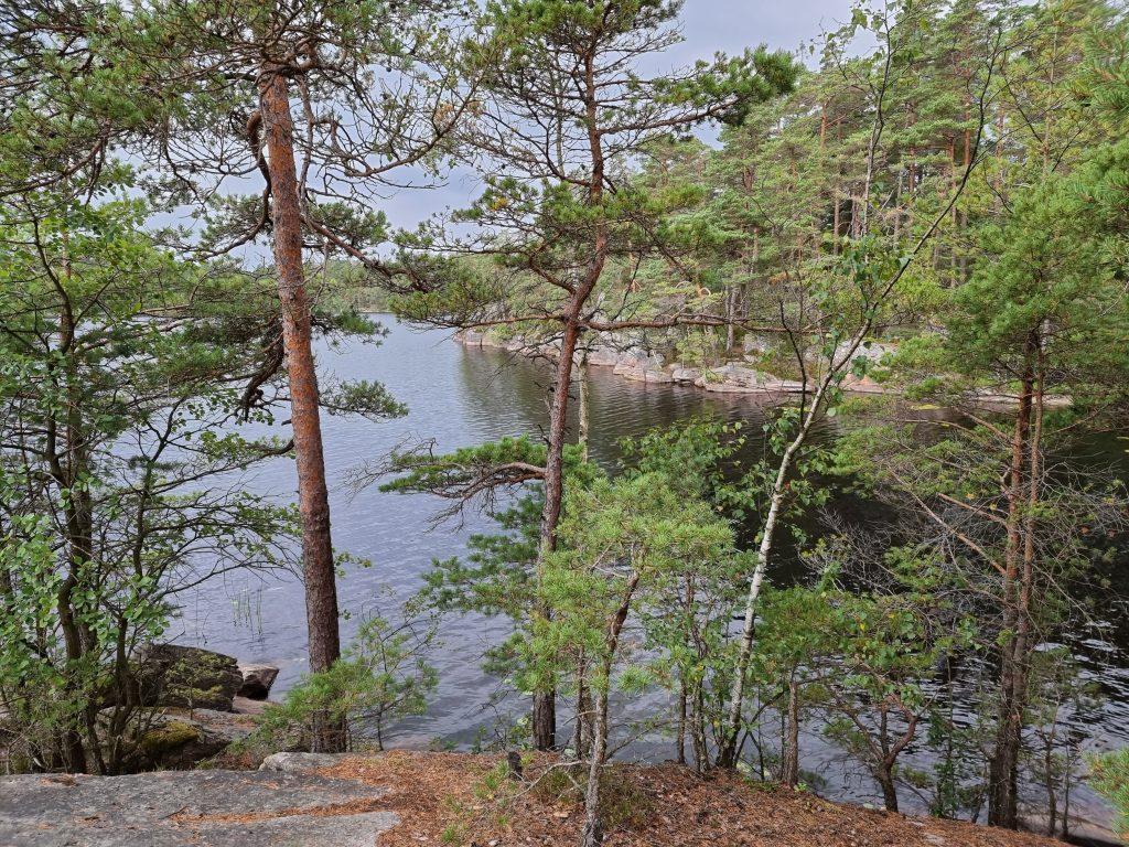 Stora Kroksjön, Risveden