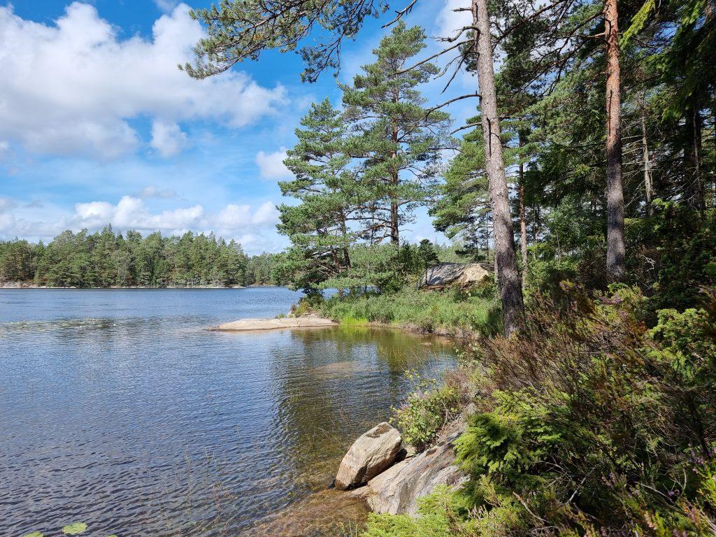Ännu en sjö - i Svartedalens sagoskog