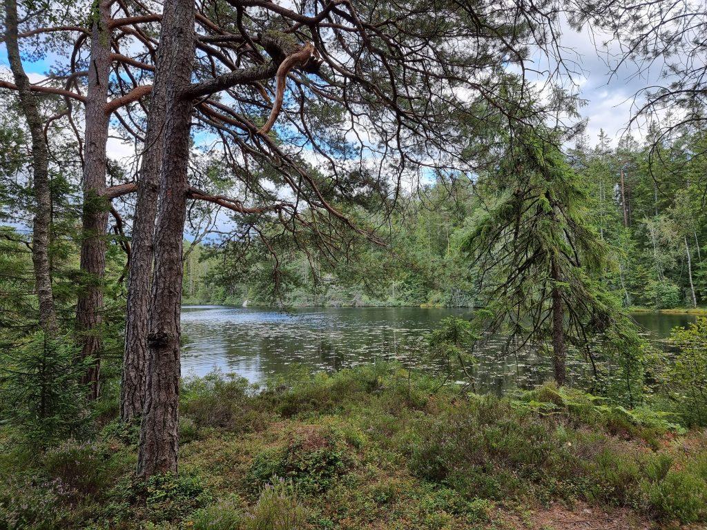 Stora Iglekärr - en av sjöarna vi övernattade mellan under vår mitt-i-veckan-tur