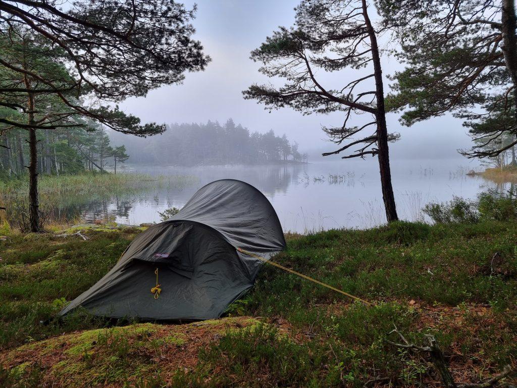 Härligt dimmig morgon utanför tältet