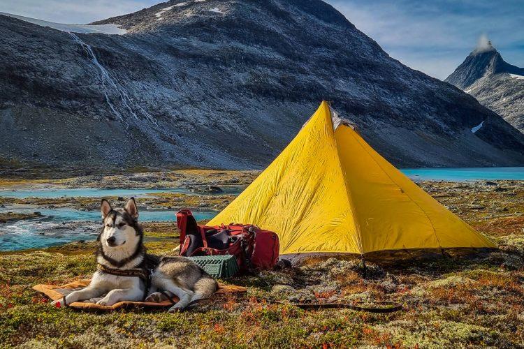 Balder framför tältet - jag lovar, det är MYCKET kallare än det ser ut