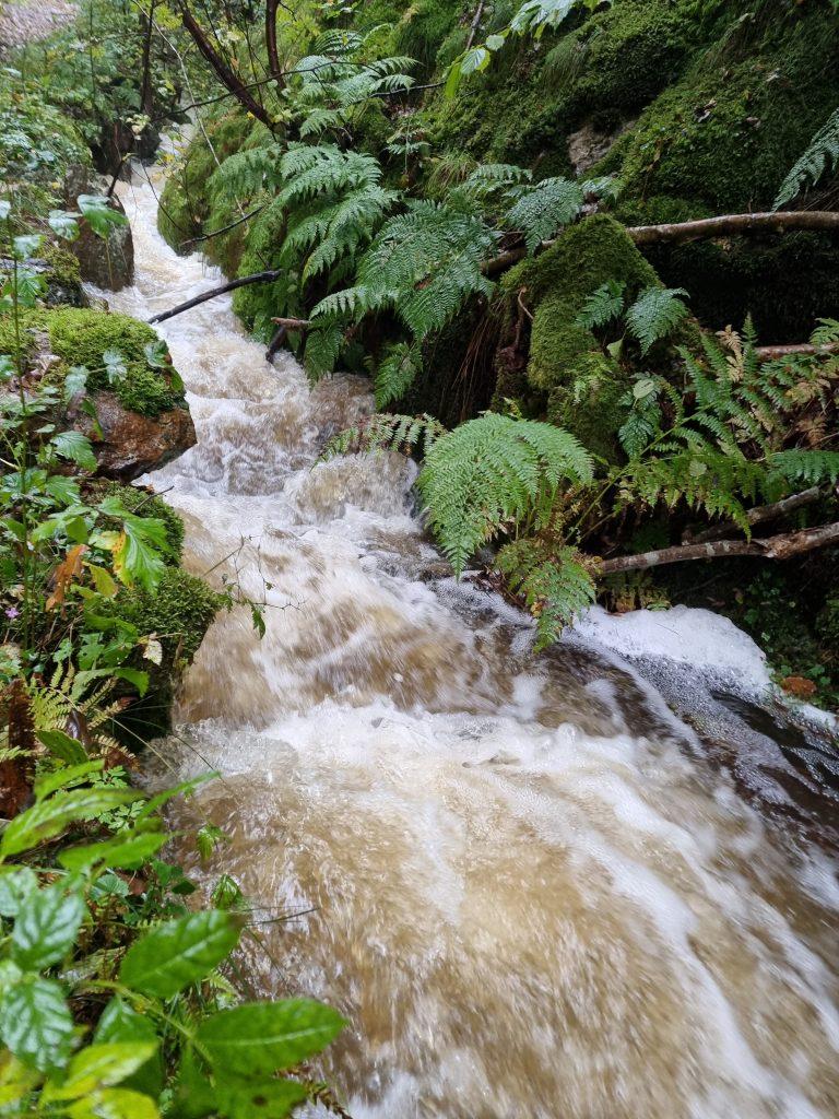 Efter allt regn forsar det fram vatten bredvid leden